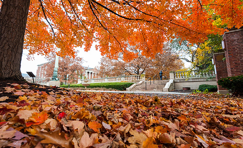 University of Rochester students walk across Eastman quad between classes October 1, 2013.